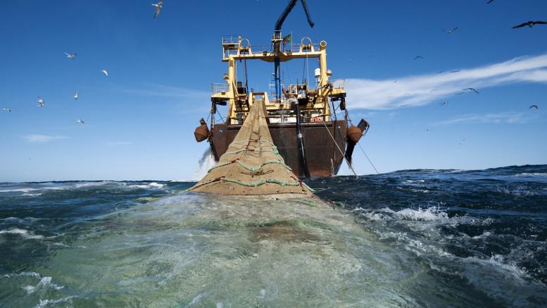 The 120 meters pelagic trawler Johanna Maria is owned by  Dutch company  Jaczon, sailing under Irish flag.