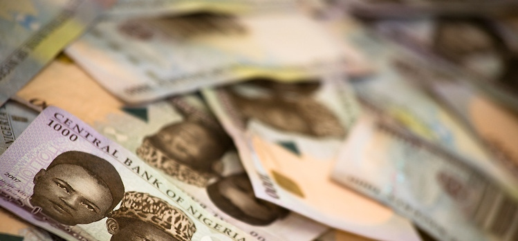 Nigeria Budget Investors King