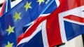 Brexit referendum slowdown U