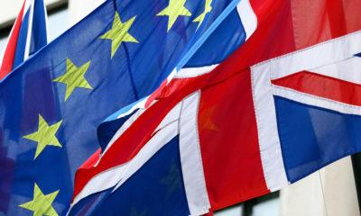 Brexit referendum slowdown U