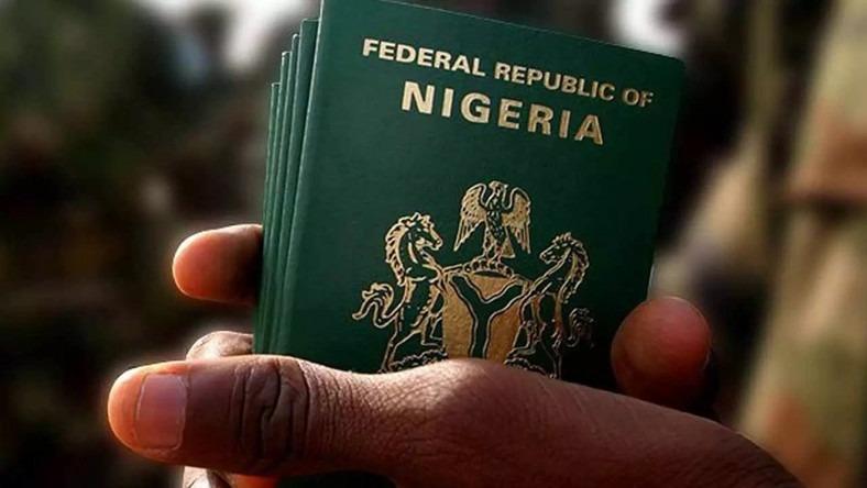 Nigerian passport - Investorsking