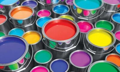 CAP Paint - Investors King