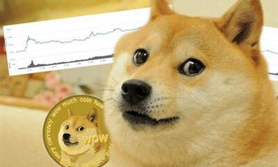 Dogecoin - Investors King