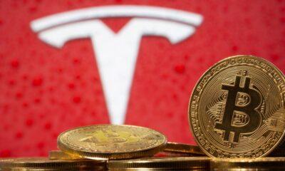 Tesla Bitcoin - Investors King