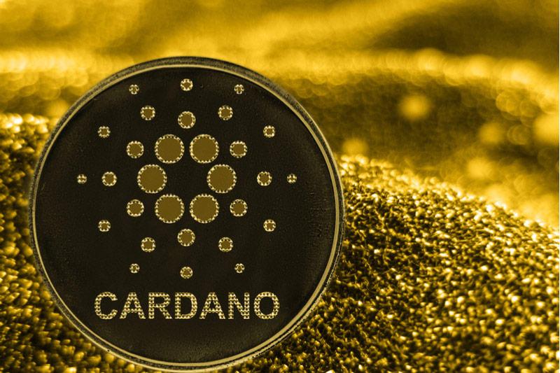 Cardano- Investorsking