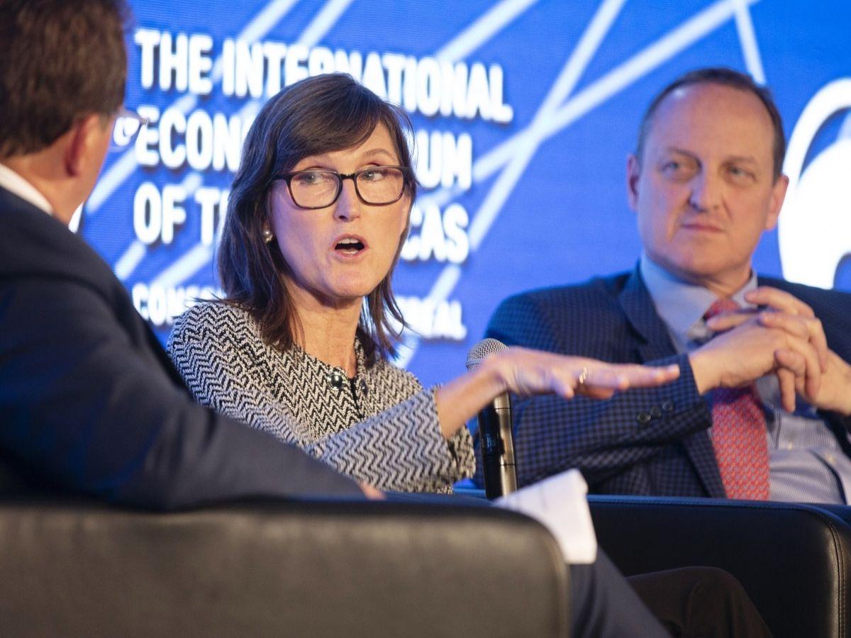 Cathie Wood - Investorsking