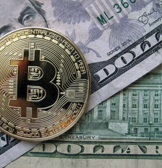 Dollar Cryptocurrency - Investors King