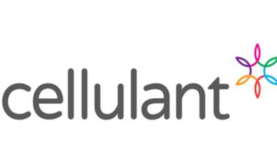 Cellulant - Investors King