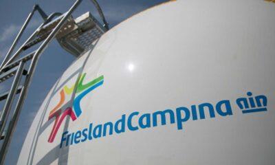 FrieslandCampina- Investors King