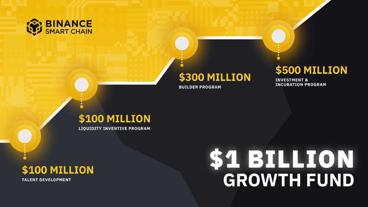 Binance Growth Fund-Investor-King
