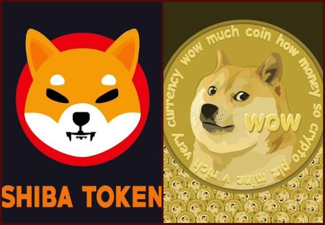 Shiba Inu and Dogecoin- Investors King