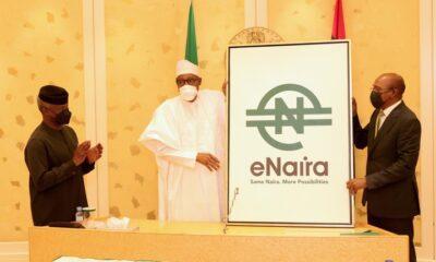 Enaira launching in Abuja - Investors King